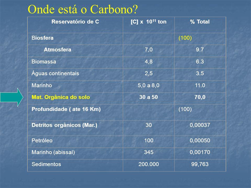 Onde está o Carbono Reservatório de C [C] x 1011 ton % Total Biosfera